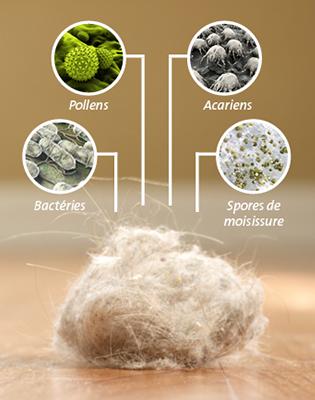 Les poussières domestiques, un facteur à risque